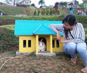 Harga Tiket Masuk Dan Alamat Taman Kelinci Malang, Spot Wisata Baru Ala Negeri Dongeng