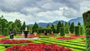 Lokasi dan Harga Tiket Masuk Taman Bunga Wiladatika Depok, Tempat Wisata Keluarga Yang Begitu Menggoda