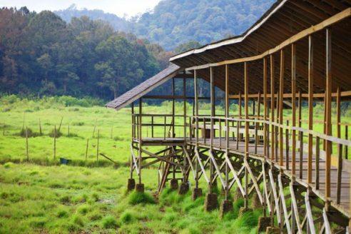 Lokasi dan Harga Tiket Masuk Kampung Cai Ranca Upas, Spot Wisata Alam Terbuka dan Bumi Perkemahan di Bandung