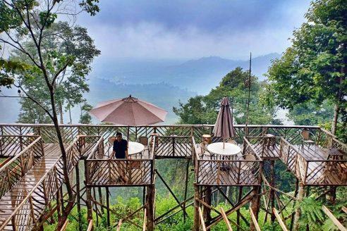 Lokasi dan Harga Tiket Masuk Rumah Pohon Habitat Pamah Sumatera Utara, Wisata Ngehits dengan View Yang Apik