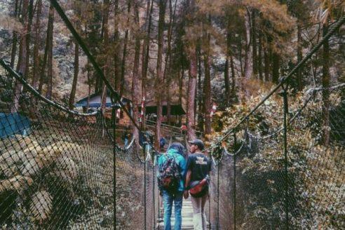 Rute dan Harga Tiket Masuk Loji Suaka Elang Bogor, Destinasi Wisata Apik dengan Suguhan Keindahan Alami