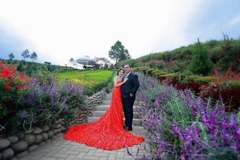 Rute dan Harga Tiket Masuk Sapo Juma Tongging Sumatera Utara, Pesona Resort dengan View Bunga Cantik