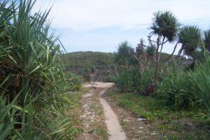 Tempat Wisata Alam Pantai Krakal, Debur Ombak Pantai Jogja Yang Asik Untuk Berselancar