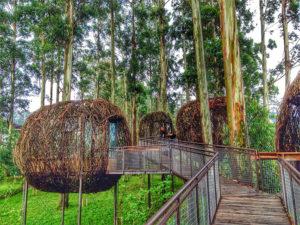 Lokasi Dan Harga Tiket Masuk Dusun Bambu Lembang Bandung, Serunya Liburan Kembali Ke Alam