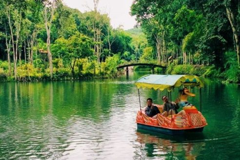 Lokasi dan Harga Tiket Masuk Waduk Andeman Turen Malang, Serunya Bermain Air Ditengah Pohon Bambu Ala Jepang
